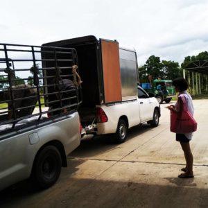รถกระบะรับจ้างจังหวัดลำปาง 061-2123575 ตัวช่วยเรื่องการขนย้ายที่ดีและถูก